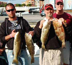 Gag Grouper and Mangrove Snapper from offshore Naples