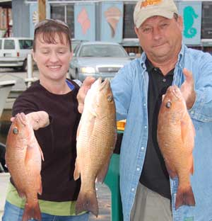 Snapper Fishing, Naples, FL