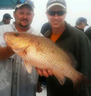 Snapper from fishing charter